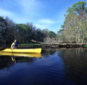 canoeing on Hillsborough River photo