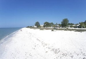 honeymoon island state park image