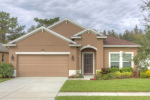 homes for sale in Wesley Chapel, FL, Wesley Chapel homes for sale