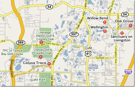 Lutz Florida Map Beautiful Homes For Sale in Lutz FL Lutz Florida Map